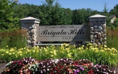 Brigata Hills